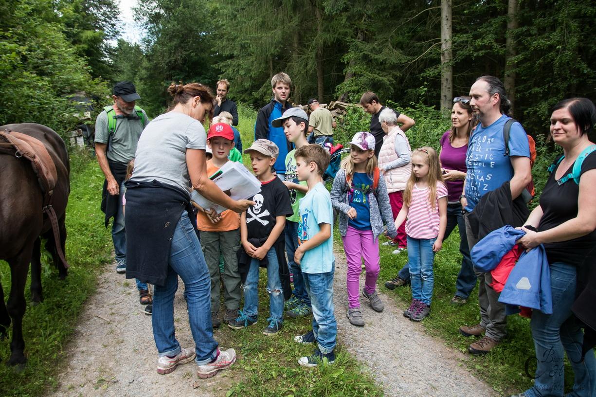 Wandern mit Ziegen zur Siegfriedsquelle